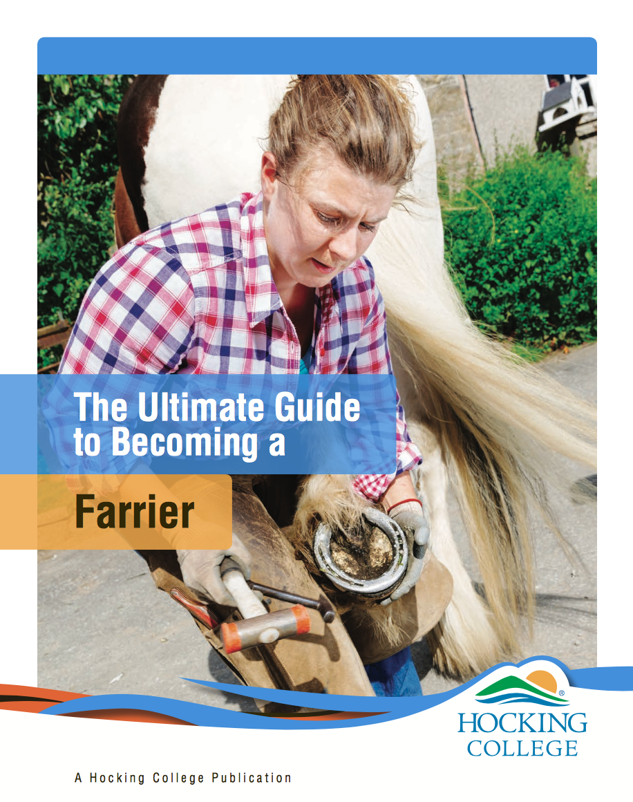 become a farrier in ohio | find your ideal career