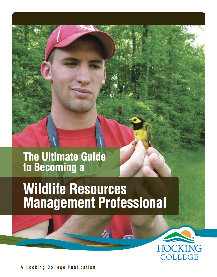 become a wildlife manager | find your ideal career