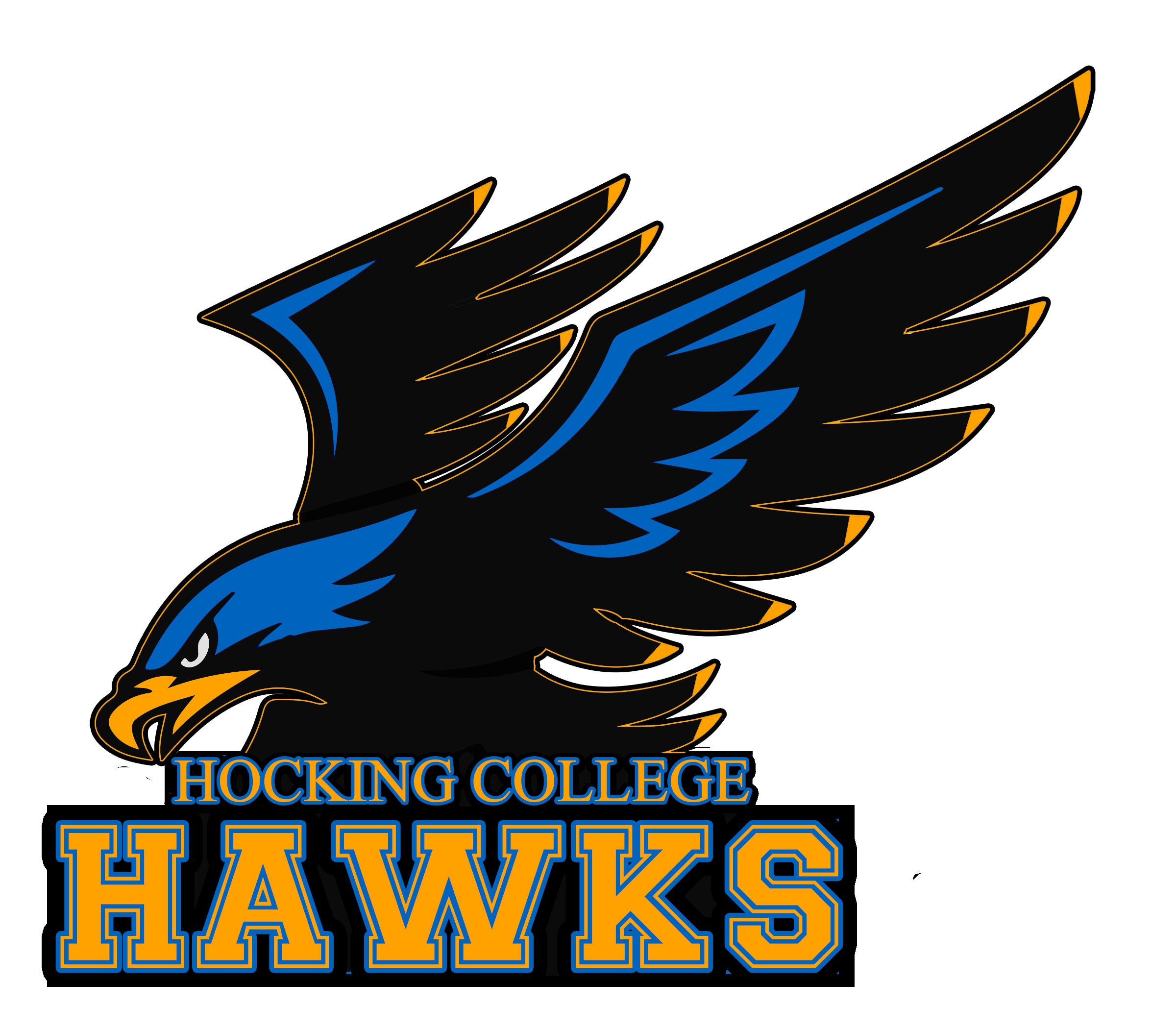 HawkLogo vector