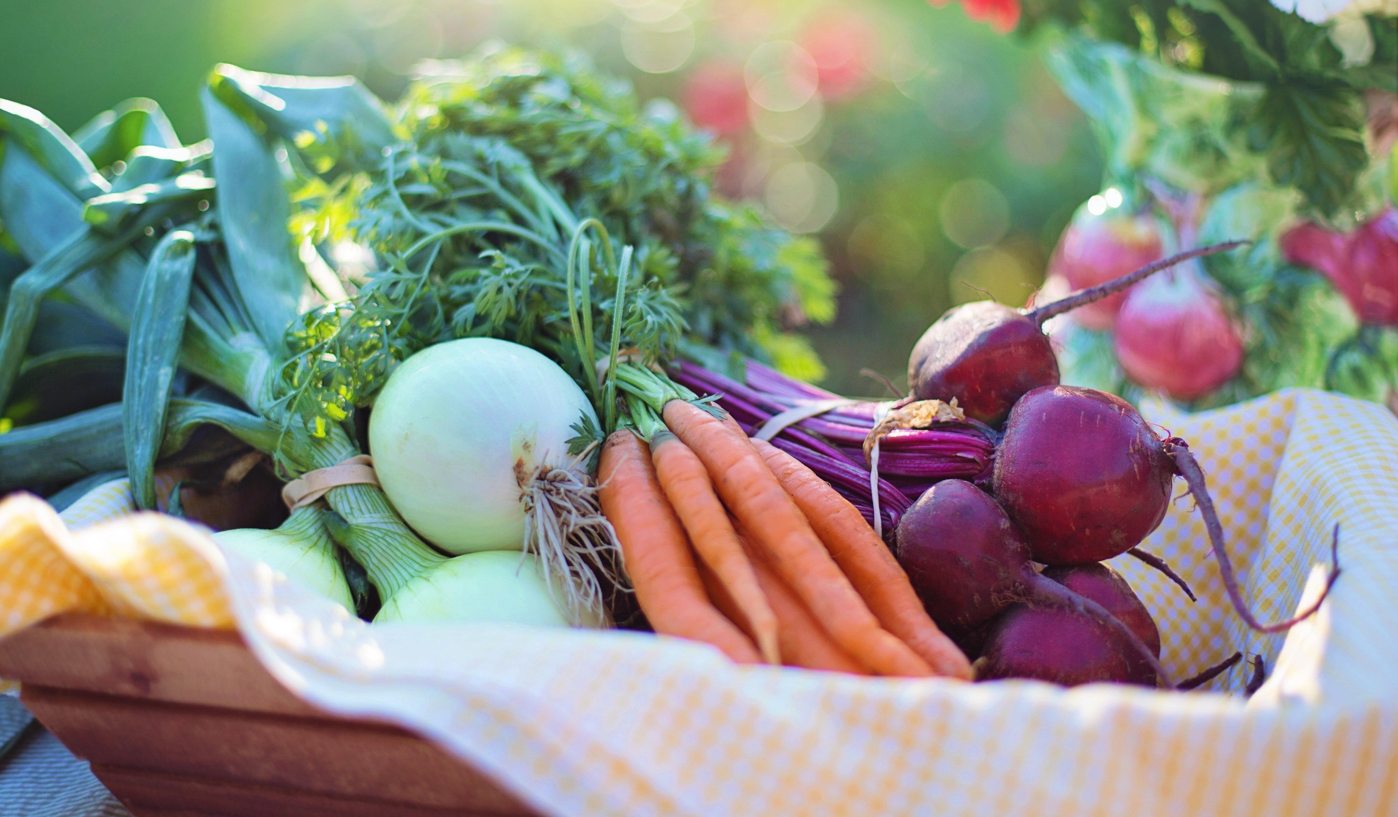 agriculture-basket-beets-533360-452295-edited
